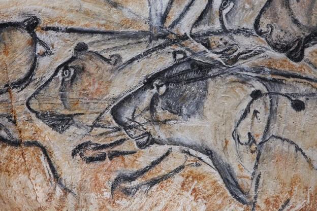 grotte chauvet en Ardeche